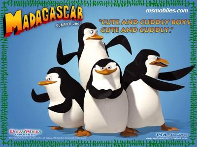 luv penguinse